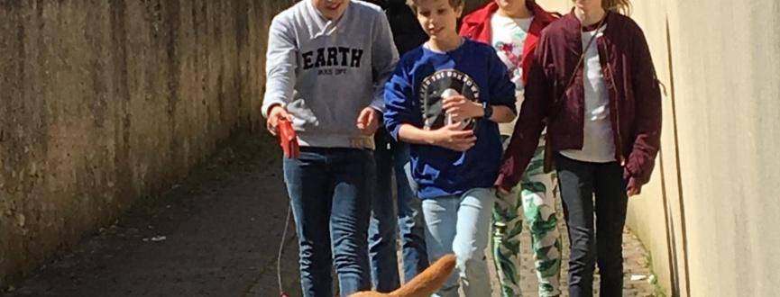 Le Conseil Municipal des Jeunes lutte contre les déjections canines